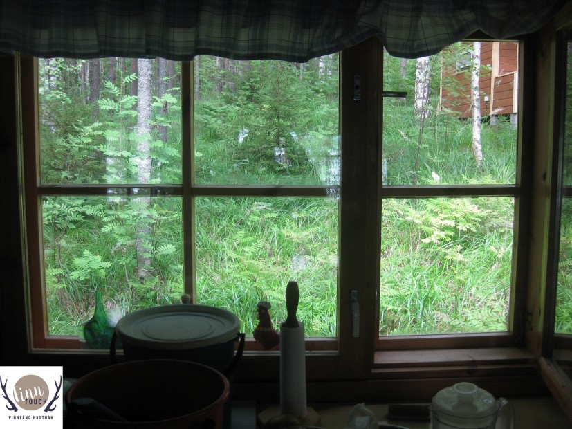 Einfach nur eine Wohltat - aus dem Fenster blicken in den grünen finnischen Wald.