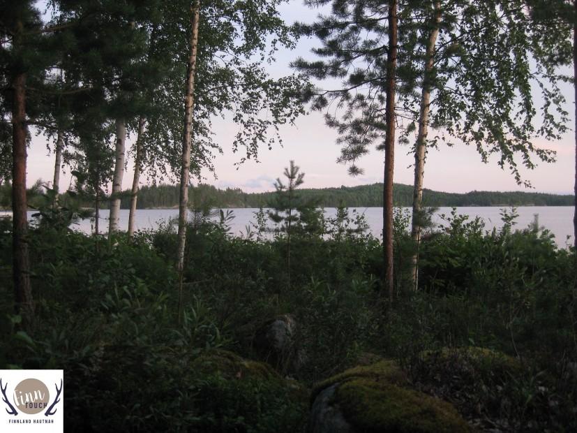 Bäume, Himmel, Wasser - Natur so, wie sie sein muss.
