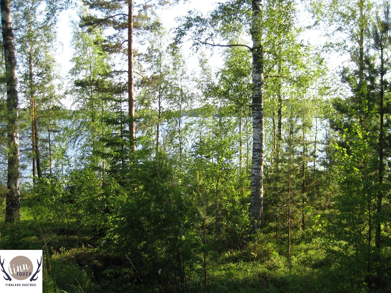 Bei solchen Aussichten von der Veranda des Sommerhauses ist es doch verständlich, dass die meisten Finnen in sich ruhen, oder etwa nicht?