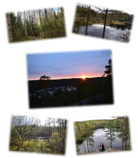 Der wunderschöne Nuuksio Nationalpark - Bilder sagen mehr als Worte.