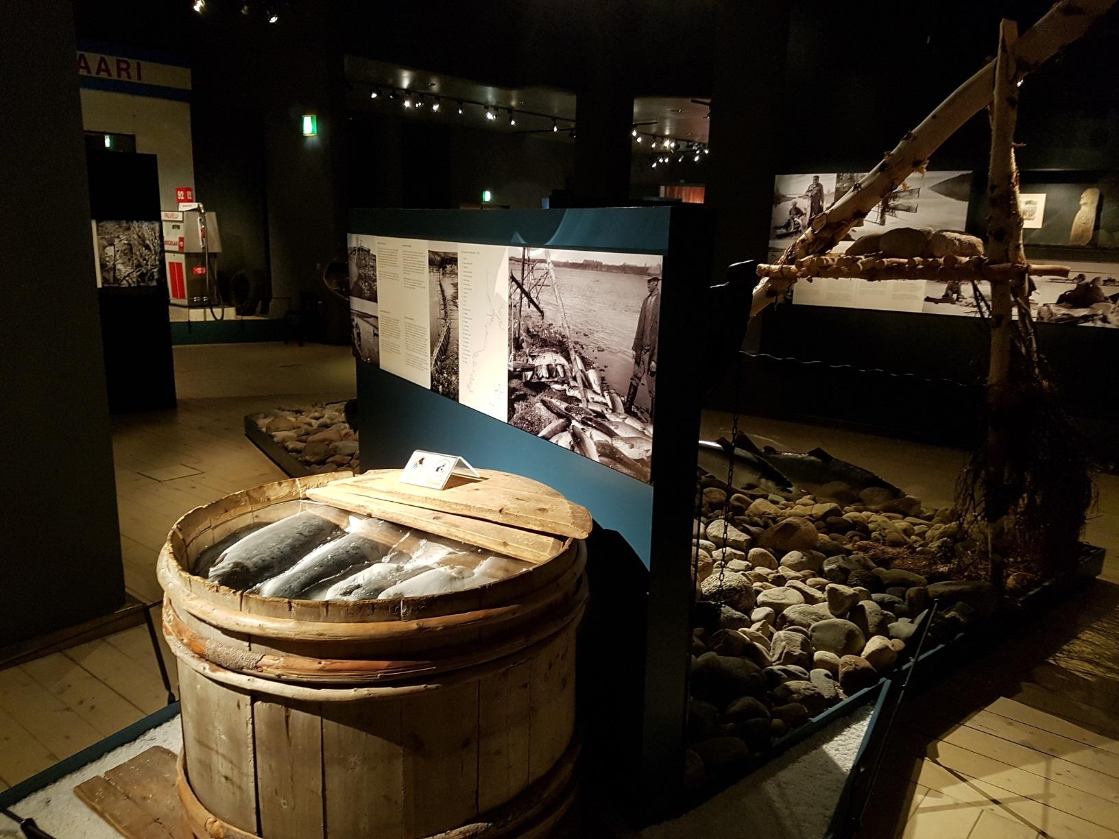 Arktikum Rovaniemi Ausstellung
