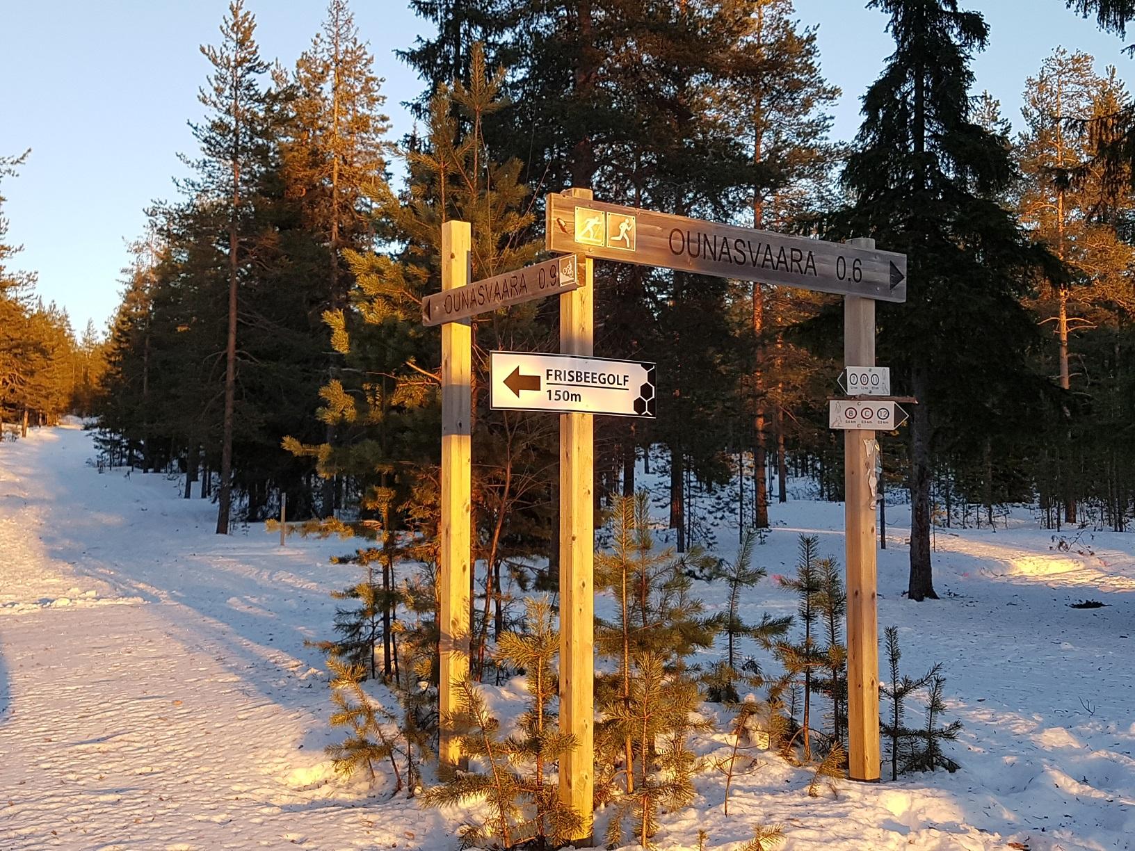 Rovaniemi Wanderung Ounasvaara