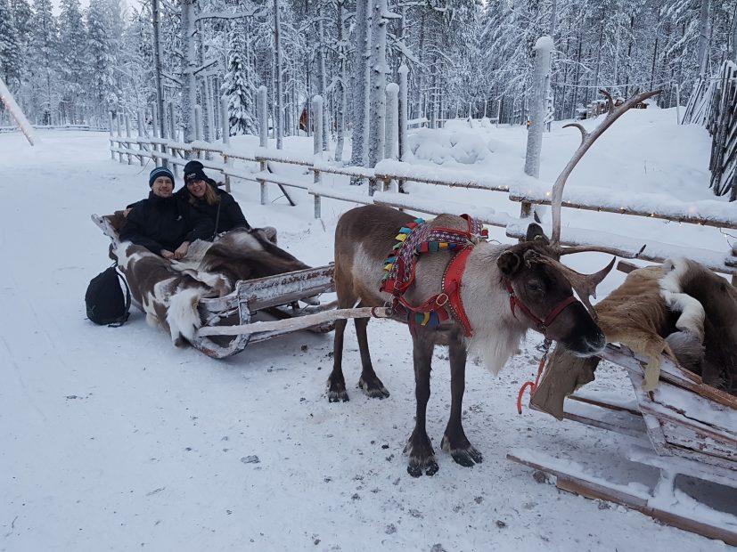 Rentierschlittenfahrt mit Santa Claus Reindeer