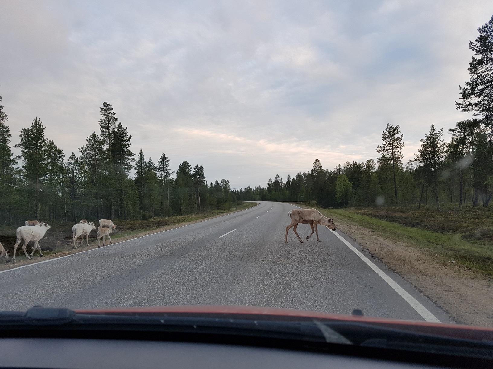 Straße in Finnisch-Lappland