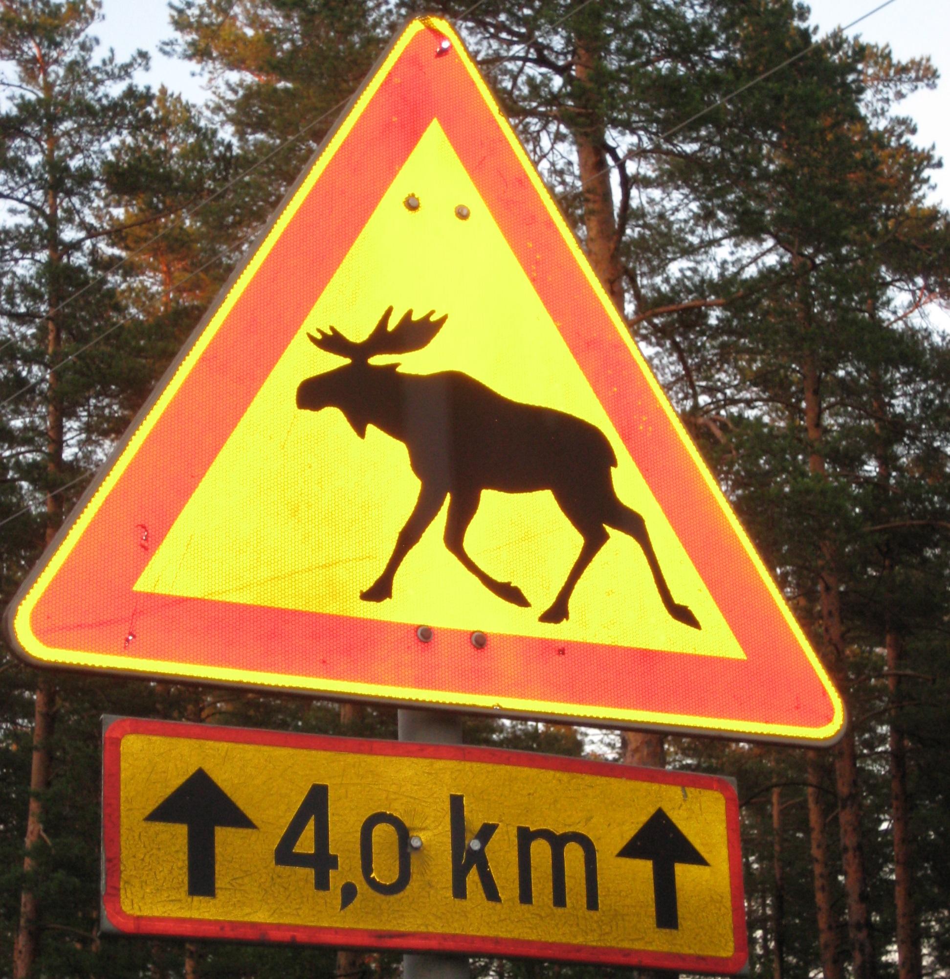 Finnland Bücher mit Humor