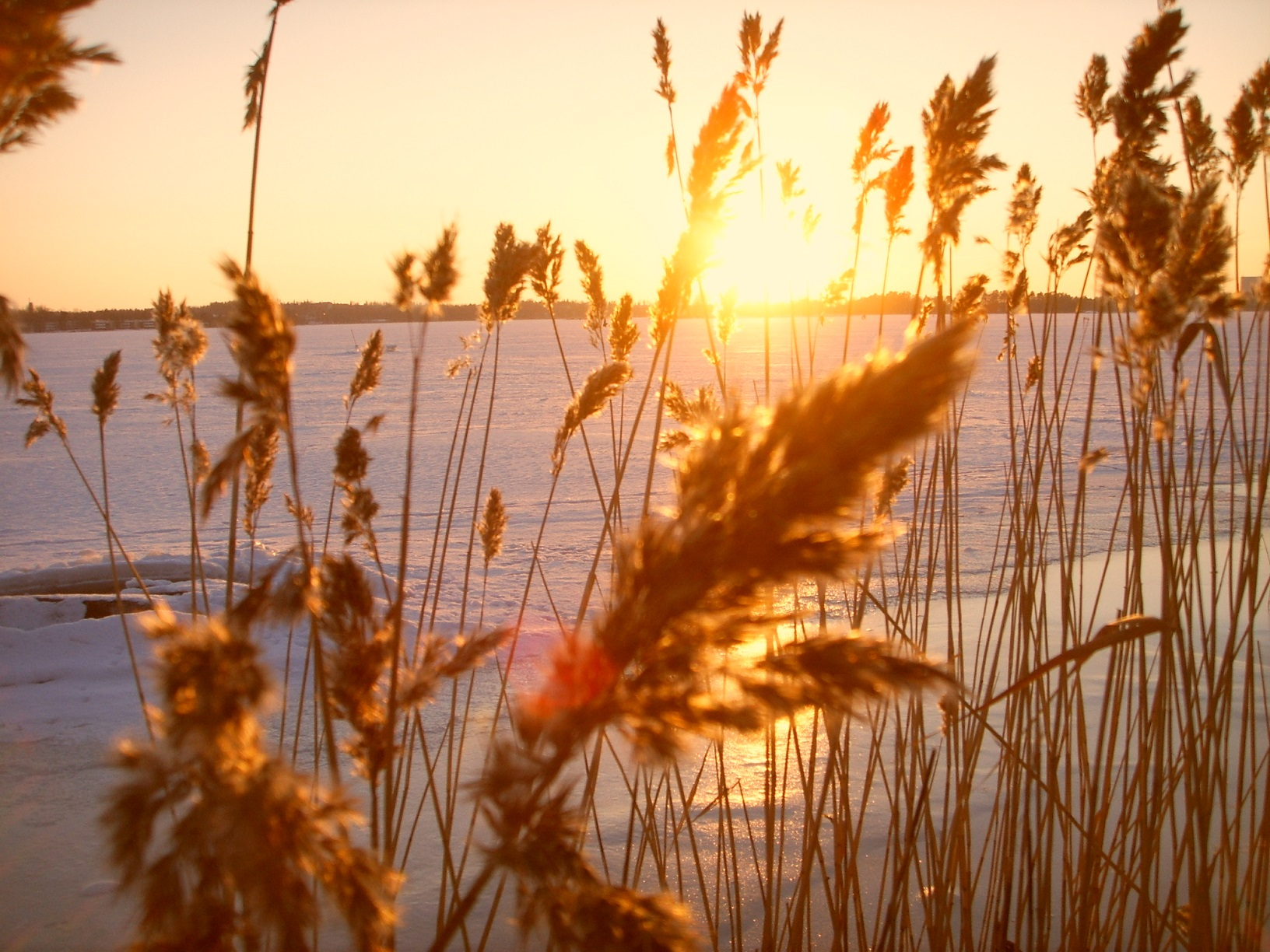 Hietaranta Helsinki Sonnenuntergang