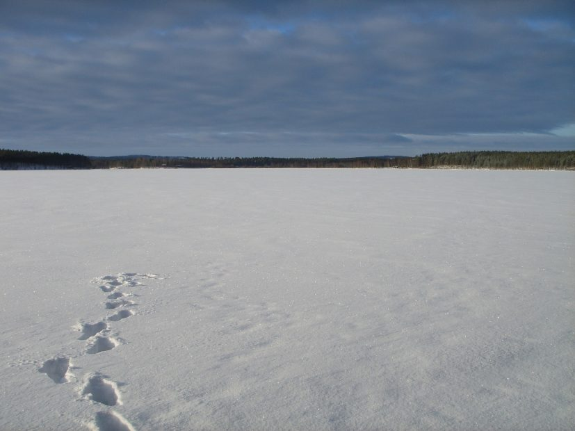 Zugefrorener See in Finnland