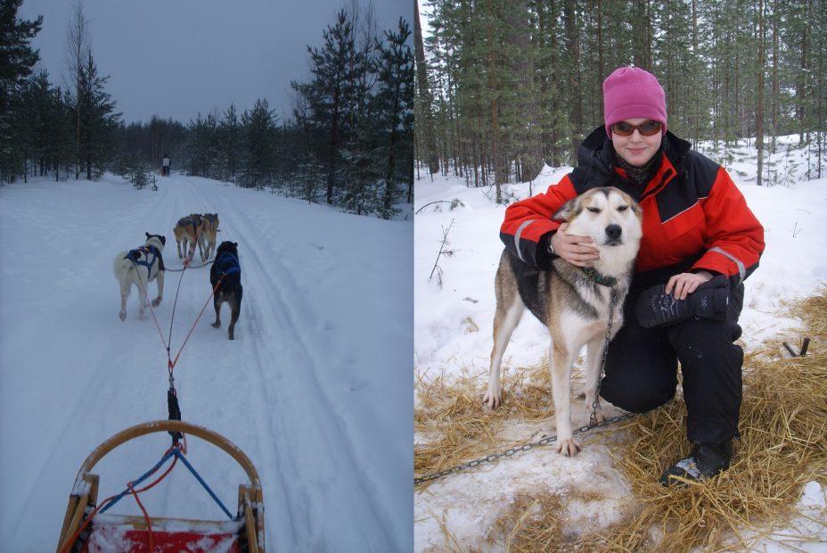 Schlittenhundetour in Finnland