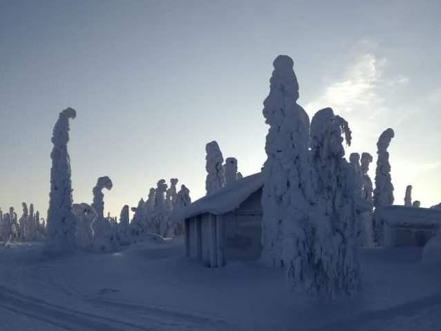 Verschneites Finnland in Salla