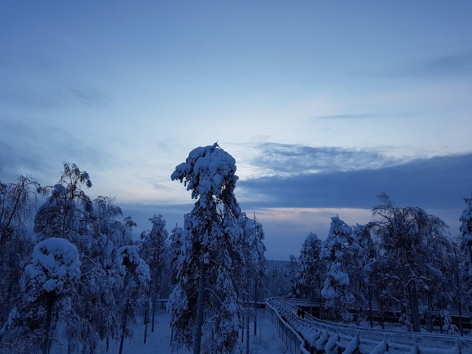Winterliche Stimmung im Wildpark Ranua