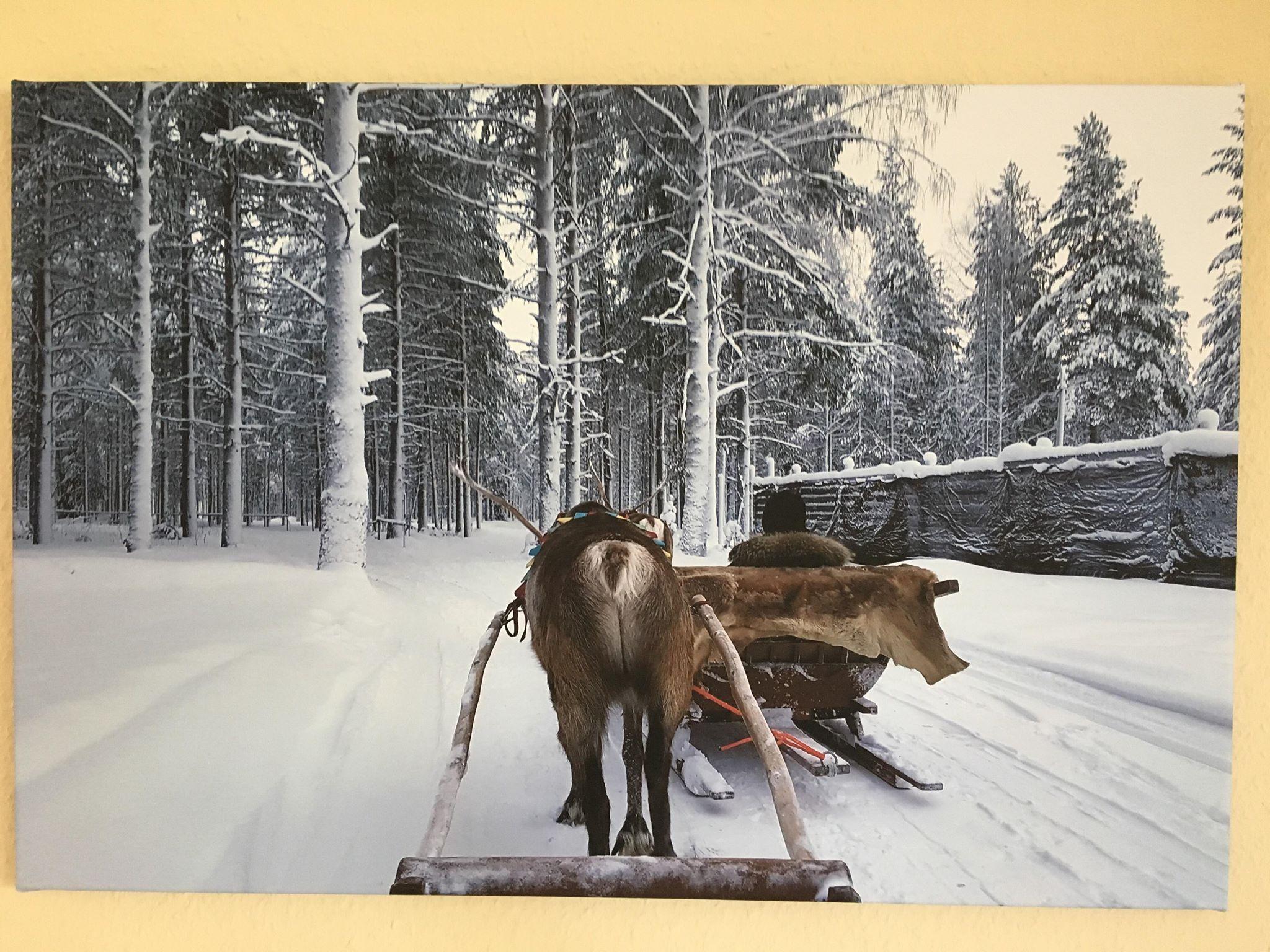 Finnland Fotoleinwand von Smartphoto