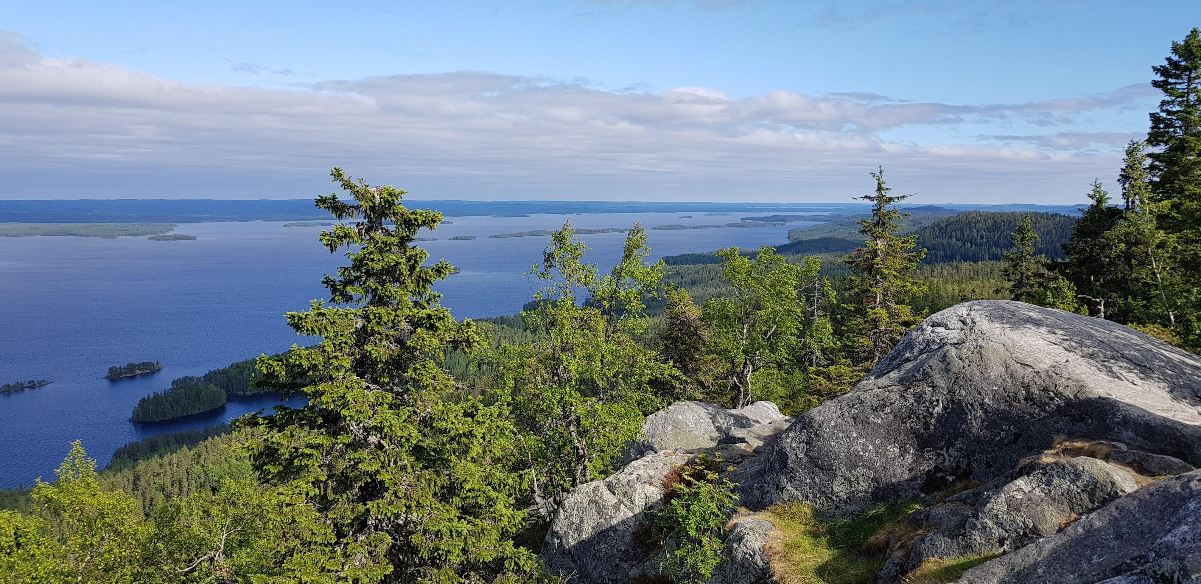 Aussicht vom Ukko-Koli auf den See Pielinen