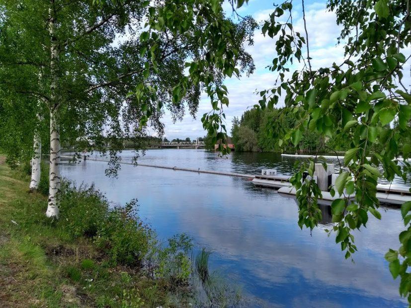 Der Pielisjoki bei Joensuu