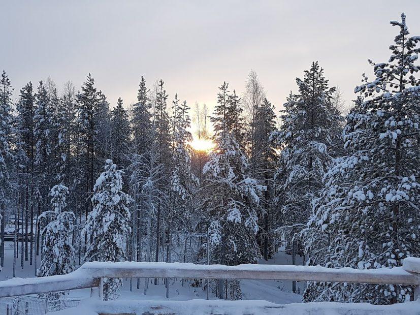Im Winter nach Finnland und etwas Besonderes erleben
