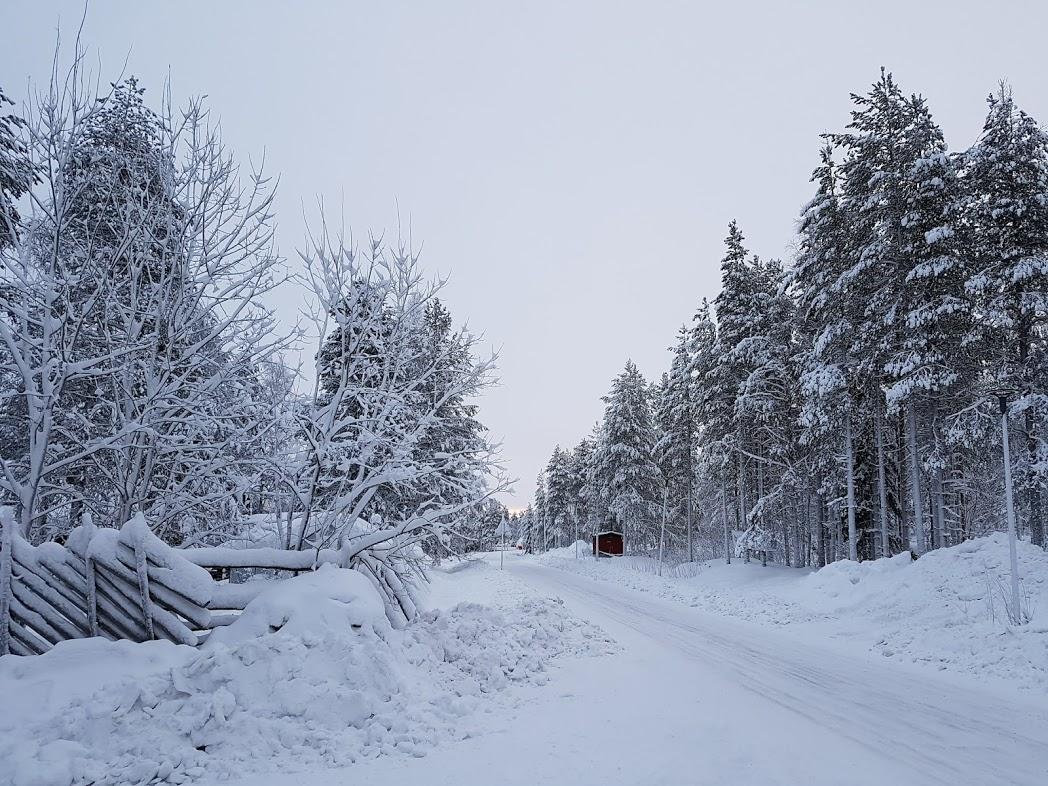 Verschneiter Wald in Finnland