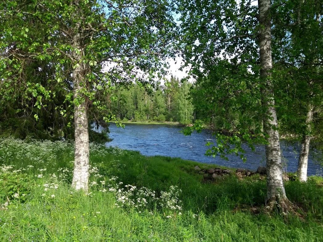 Finnische Natur