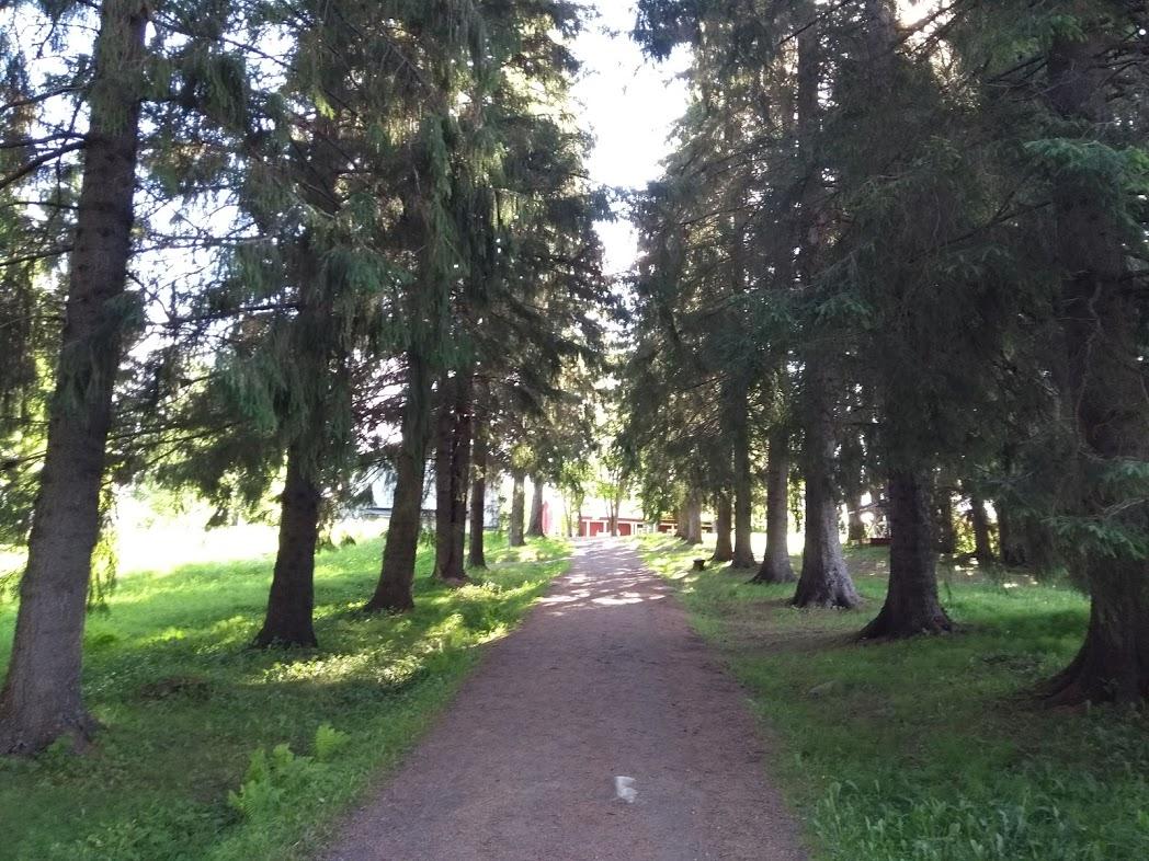 Weg zum Bootsanleger des Klosters Uusi Valamo