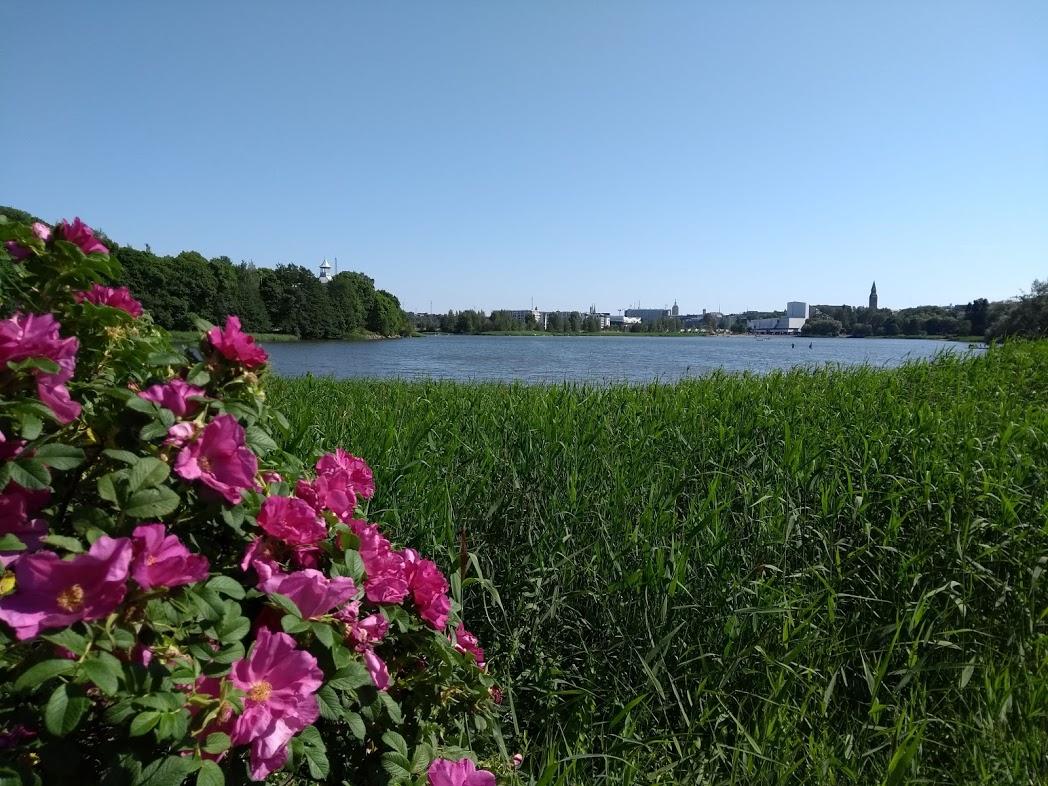 Bucht Töölönlahti in Helsinki