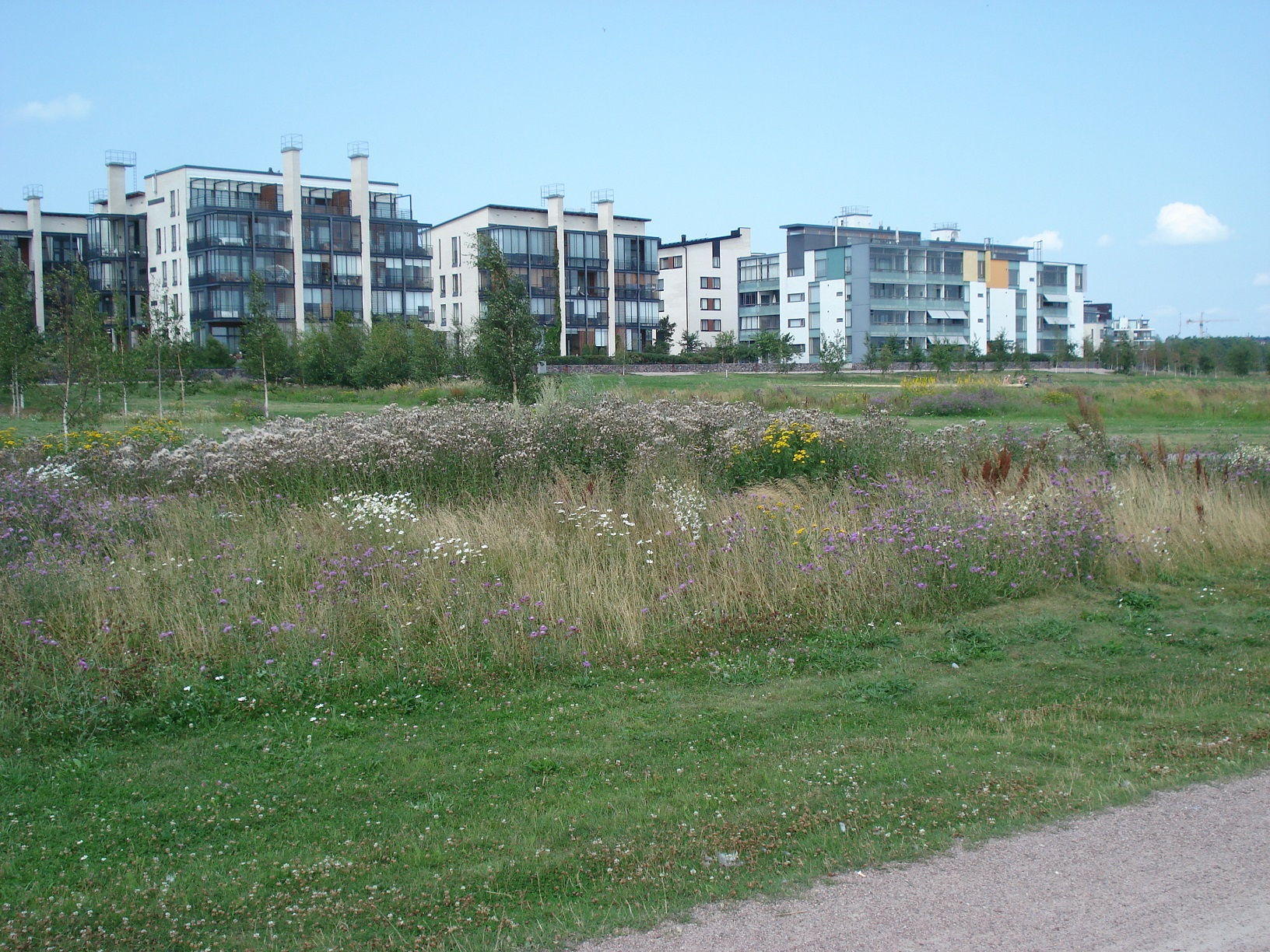 Helsinki Arabianranta