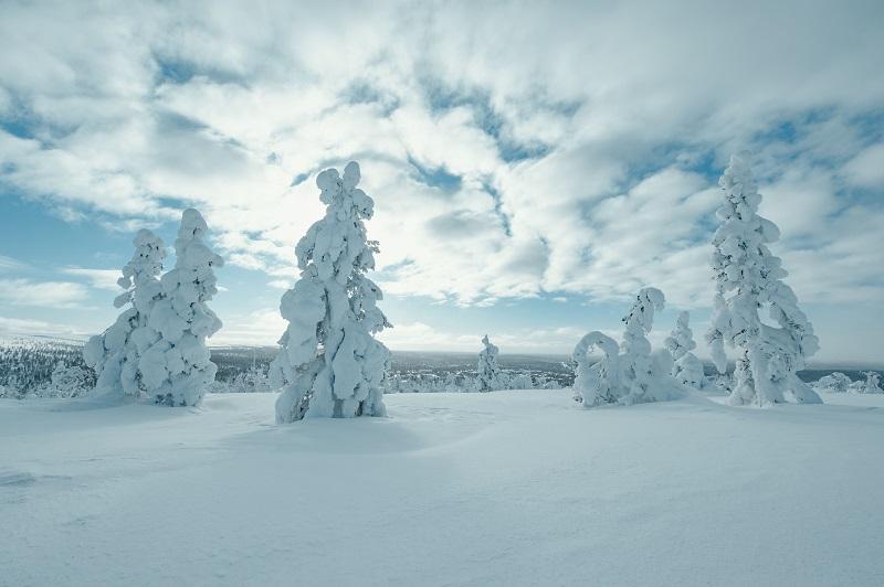 Szenenbild aus Arctic Circle