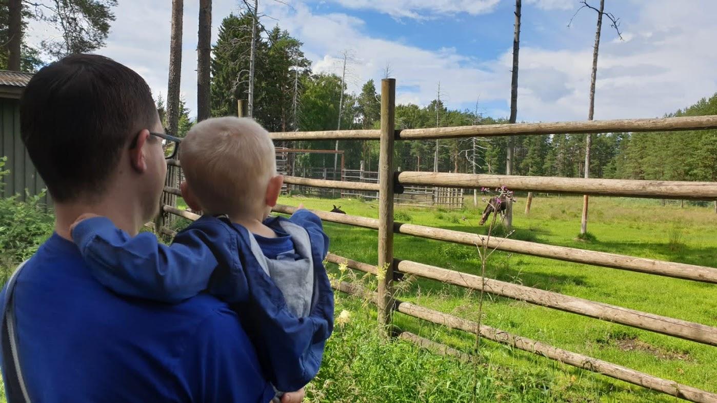 FinnTouch im Ähtäri Zoo