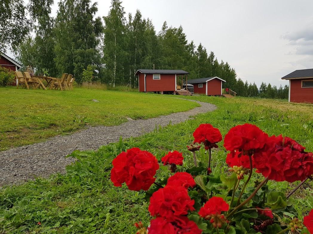 Itärajan Helmi in Tohmajärvi