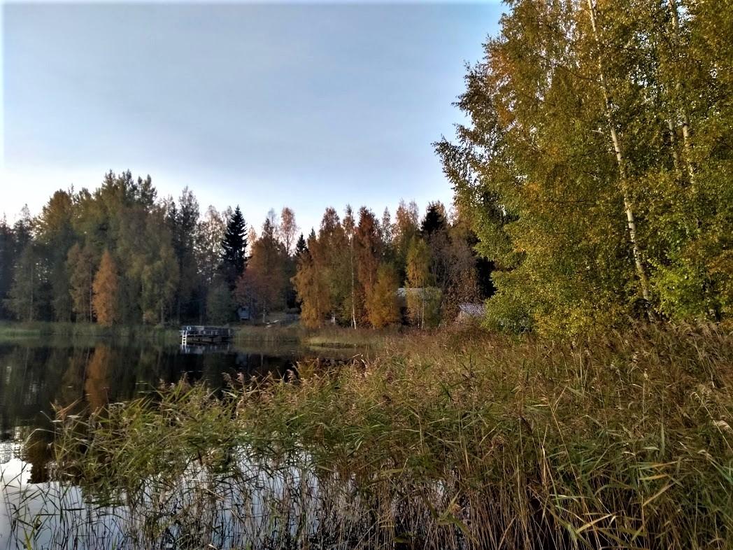 Herbst an einem finnischen See