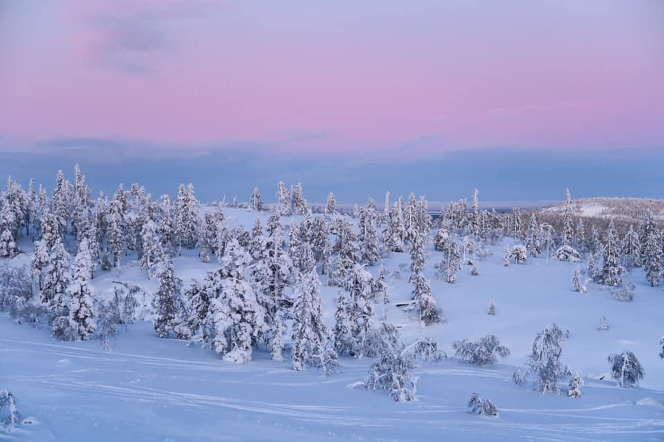 Pyhätunturi in Finnisch-Lappland