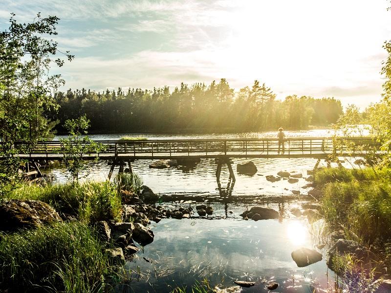 Naturpfad Kämäri in Varkaus