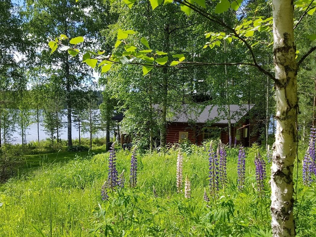 Mökki in Finnland