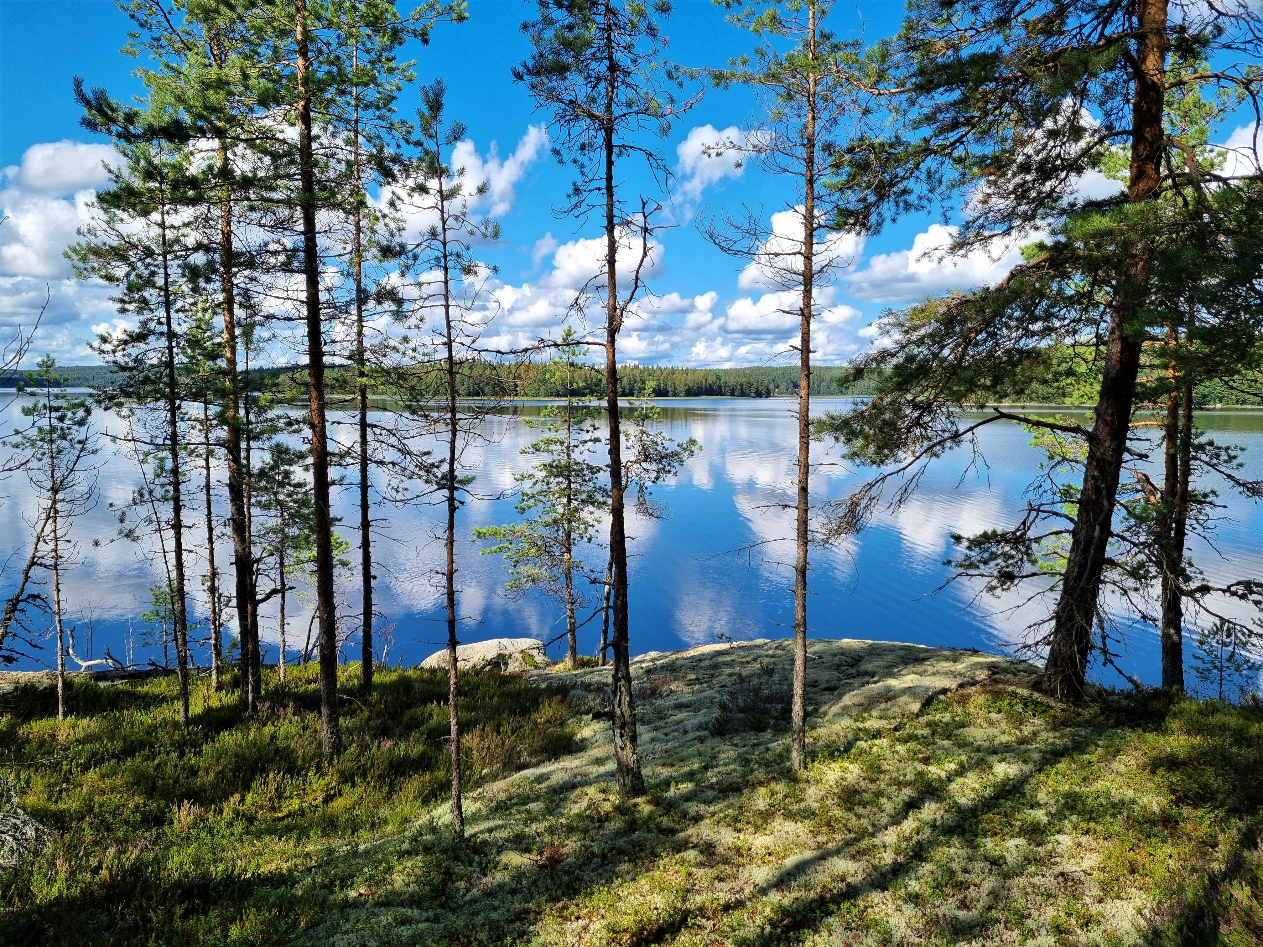 Tenturi Lodge in Finnland
